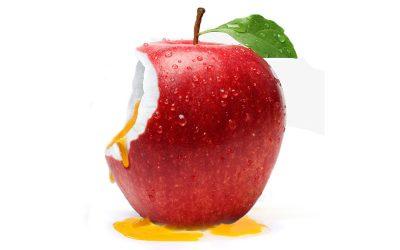 Les Fruits Hybrides – Exercice de PAO